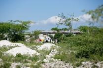 HaitiMarchweb010