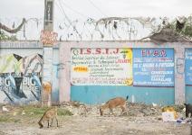 HaitiMarchweb011