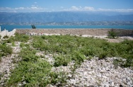 HaitiMarchweb091