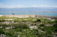 HaitiMarchweb093