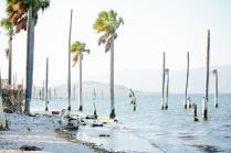 HaitiMarch156